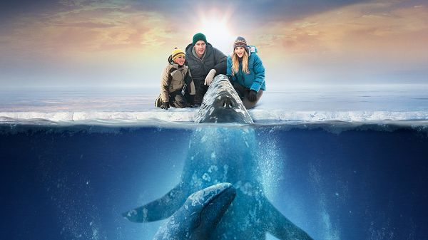 Big Miracle in 1920x1080 Pixel, a Smart and Cute Blue Whale, What a Harmonious Relationship! - TV & Movies Wallpaper