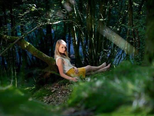 click to free download the wallpaper--Blond Girl Images, Nice Girl in Forest, Sitting on Brown Leaves