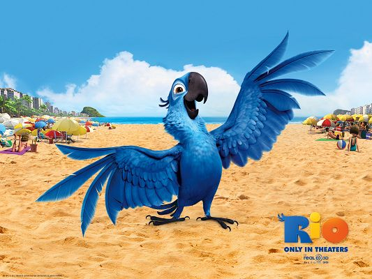 Blu Bird in Rio Post in 1600x1200 Pixel, the Female Bird Talking Endlessly, She Has Deep Affection to Her Homeland - TV & Movies Post