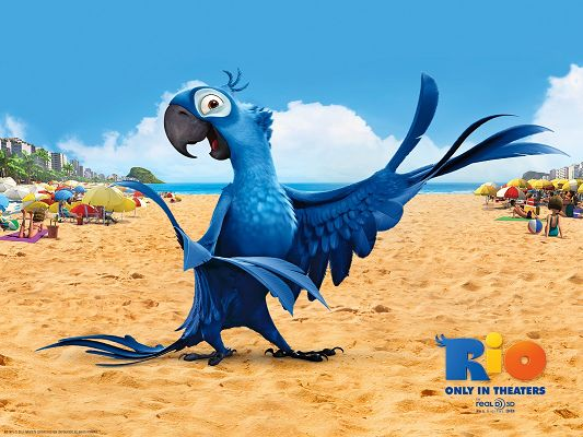 click to free download the wallpaper--Blu Post in Rio in 1600x1200 Pixel, a Tour-Like Female Bird, You Bet She Will be Doing Her Job Good - TV & Movies Post
