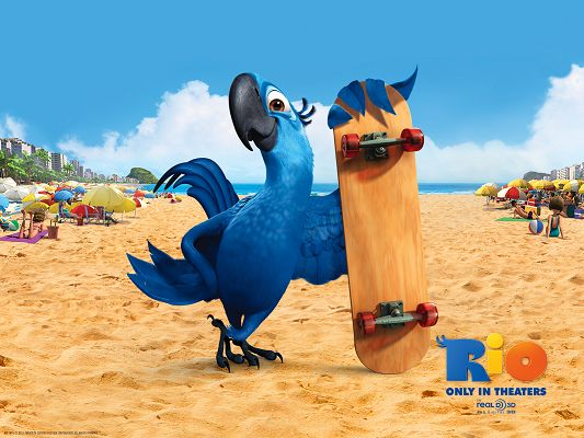Blu in Rio Movie Post in 1600x1200 Pixel, Female Bird Taking Her Slider, She Will be Having a Great Time with It - TV & Movies Post