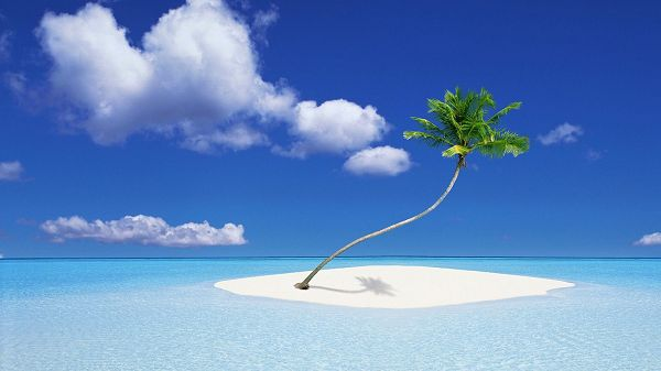 Clear and Blue Sea, a Green Plant is Living in the Middle Part, Sky is Also Quite Blue - HD Natural Scenery Wallpaper