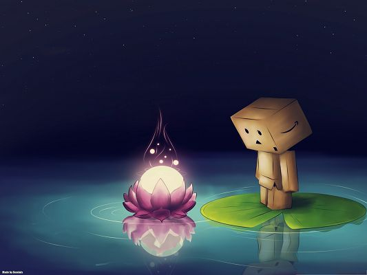 click to free download the wallpaper--Computer Background Wallpaper, Danbo Drawing, Focusing on a Bright Lotus