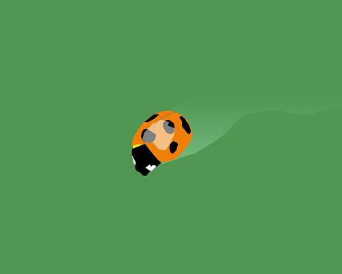Cute Animals Wallpaper, a Lady Bug on Green Background, is Simple and Impressive