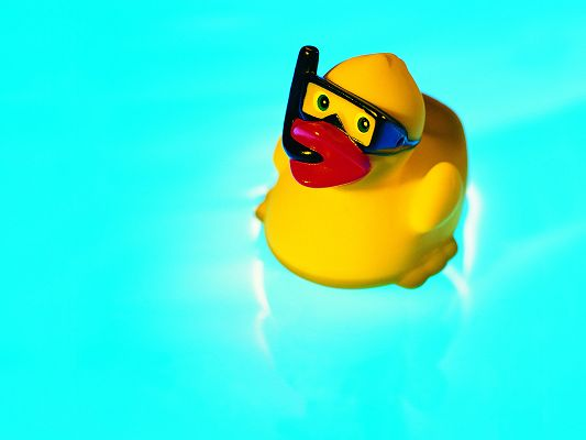 click to free download the wallpaper--Cute Animals Wallpaper, a Little Rubber Duck in Swim, the Blue Sea