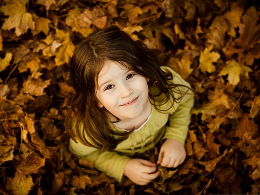 click to free download the wallpaper--Cute Girl Pictures, Smile Among Autumn Scene, Stepping on Brown Fallen Leaves