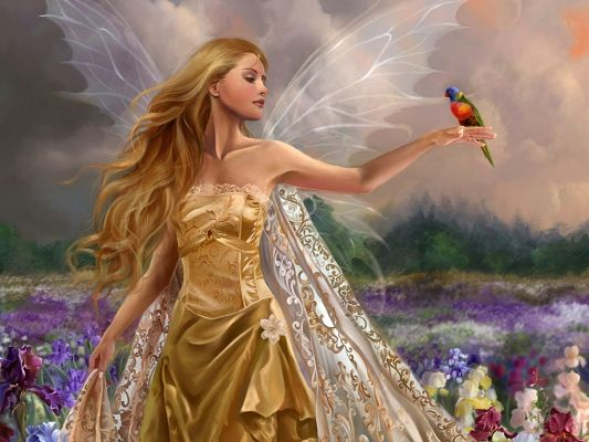 click to free download the wallpaper--Cute Girls Image, Young Lady in Blonde Dress, a Colorful Bird Close to Her, Wizard Like