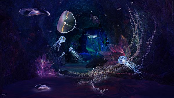 Deep Jewels Post Available in 1920x1080 Pixel, Fishes Are Lighted Up, Swimming Freely, They Shall be Quite a Fit - HD Natural Scenery Wallpaper
