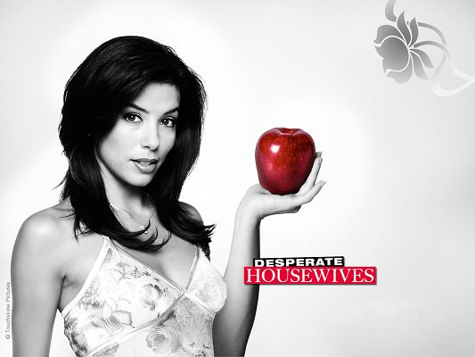 Eva Longoria Post in Desperate Housewives in 1600x1200 Pixel, White and Black Style, Friendship Does Matter a Lot for the Ladies - TV & Movies Post