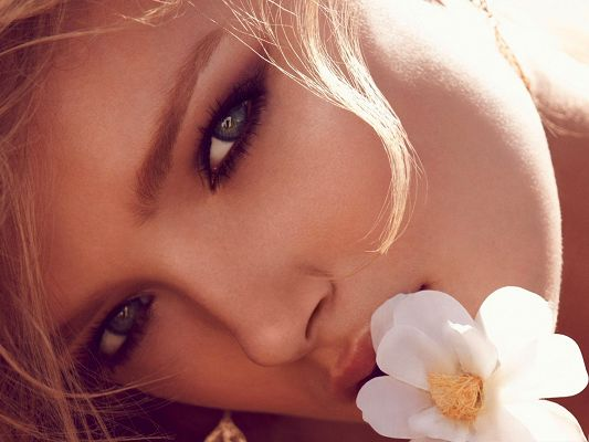 click to free download the wallpaper--Exotic Beauty Background, Beautiful Lady Kissing a White Flower, Face Portrait