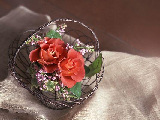 click to free download the wallpaper--Floral Art Design, Red Flowers in Small Basket, Feel Loved