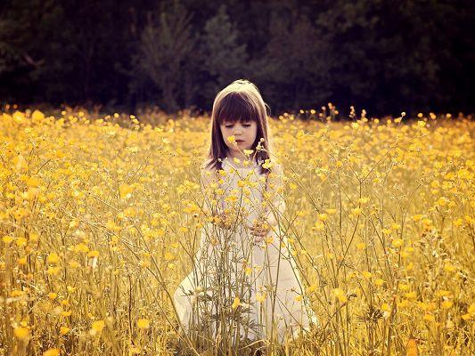 Flower Field Photography, Cute Baby Girl in Yellow Flower Sea, Having Great Fun