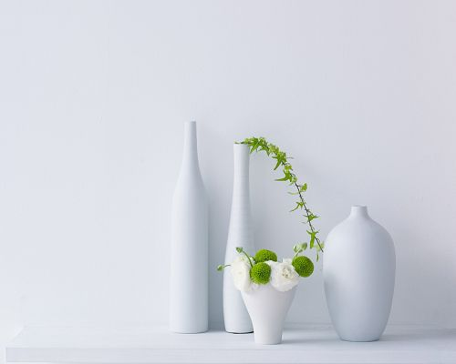 Four White Bottles Next to the White Wall, Plants Are Green and White Combined, Style is Clean and Simple - Natural Plants Wallpaper