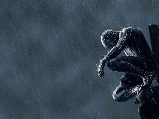click to free download the wallpaper--Free 3D Film Poster, Spider Man in the Rain, Super Hero Gets Gloomy