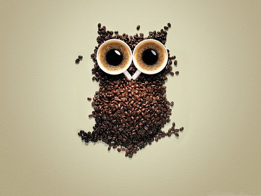 Free Creative Wallpaper, Nuts and Two Coffees Making an Owl, Nice Design