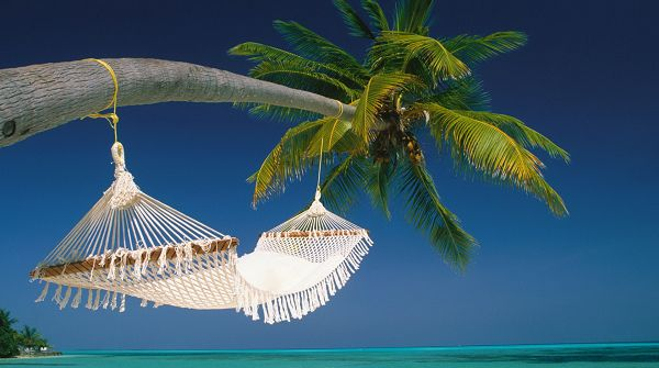 Free Download Natural Scenery Picture - A Bed Hung on the Coconut Tree, Great Beach Scene, Enjoy Your Stay