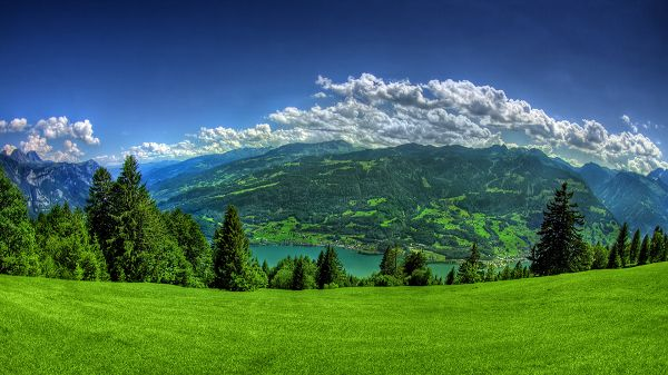 click to free download the wallpaper--Free Download Natural Scenery Picture - A Full Eye of Green, White Clouds Above the High Mountains, Fit and Add to the Beauty