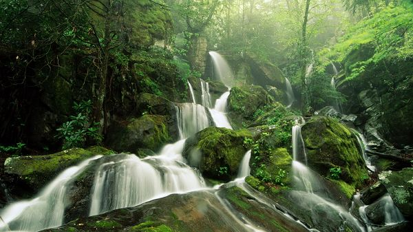 Free Download Natural Scenery Picture - A Full Eye of Green, a Waterfall Flowing Through, Combine Quite a Scene
