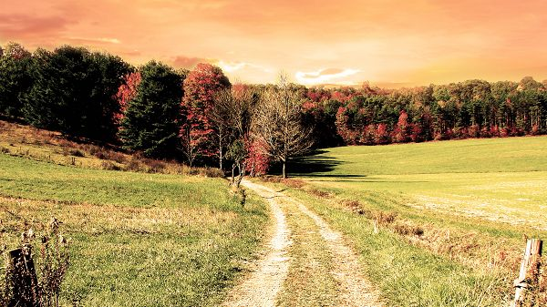 click to free download the wallpaper--Free Download Natural Scenery Picture - A Narrow and Earthy Road, the Orange Sky, Must be a Hot Day