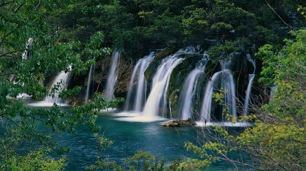 click to free download the wallpaper--Free Download Natural Scenery Picture - Numerous Waterfalls Are Pouring into the Clear Sea, Green Trees Embracing Them