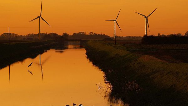 Free Download Natural Scenery Picture - Numerous Windmills in the Stand, Golden Scene, Can Expect the Setting Sun
