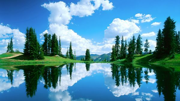 click to free download the wallpaper--Free Download Natural Scenery Picture - The Clear Blue Sea Under the Blue Sky, Green Trees and Grass Are Reflected