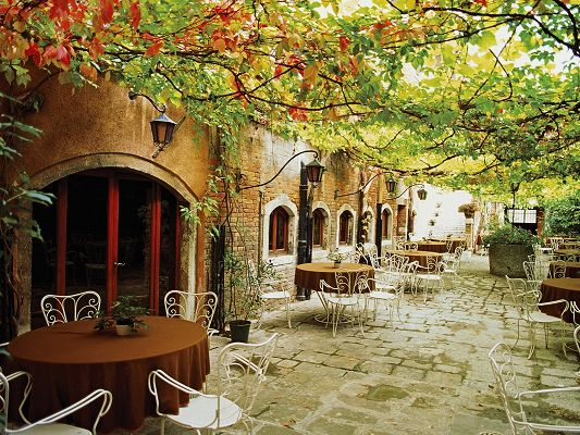 Free Download Natural Scenery Wallpaper - Dining Alfresco Venice Italy, Taking Diners Back to the Orchard