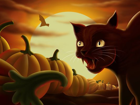 click to free download the wallpaper--Free Game Post, Angry Cat is Screaming, a Pile of Pumpkins in Front, Eat Them Up