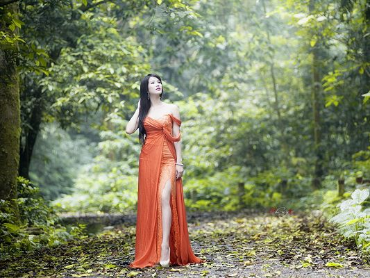 Free Girls Wallpaper, Young Lady in Long Orange Dress, Walking Out of the Forest
