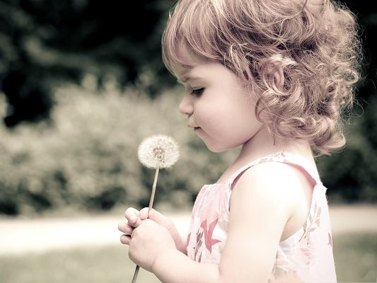 Free Wallpaper Background, Baby Girl Holding Dandelion, Making a Wish