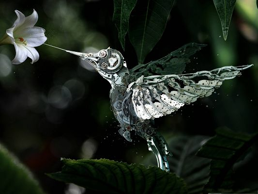 click to free download the wallpaper--Free Wallpaper Background, Robot Humming Bird, Made from Watch Parts