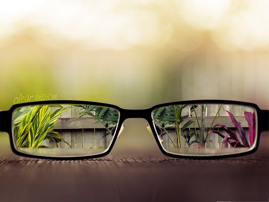 click to free download the wallpaper--Free Wallpaper Background, a Pair of Glasses, Helps Get Clear Vision