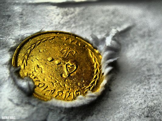 click to free download the wallpaper--Free Wallpaper Backgrounds, Golden Coin, Come and Pick It Up