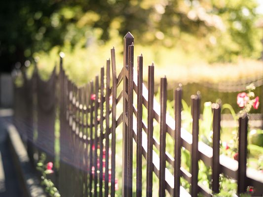 click to free download the wallpaper--Free Wallpaper Backgrounds, Metal Fence, Blooming Pink Flowers Inside
