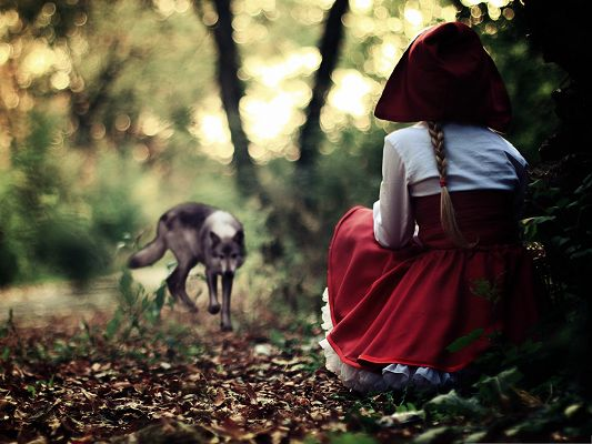 click to free download the wallpaper--Free Wallpaper Backgrounds, Red Riding Hood and Wolf, Lost in Forest