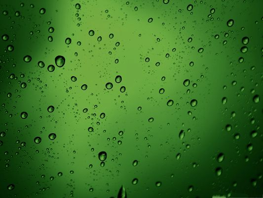 click to free download the wallpaper--Free Water Drops Wallpaper, Green Drops of Water, Differ in Size