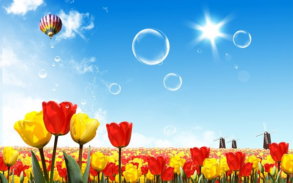 Free Scenery Wallpaper - A Fantasy World of Flowers, the Scene Is Too Good to be True!