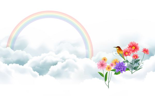 Free Scenery Wallpaper - Includes Bird and Rainbow, What a Beautiful Scene!,click to download