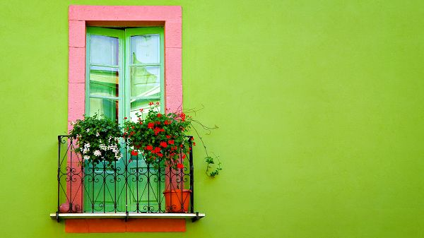 Free Scenery Wallpaper - Includes Green Wall Window, Looking Good on All Digital Devices!,click to download