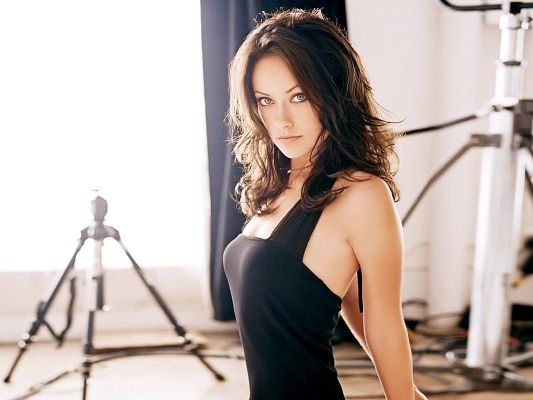Free Scenery Wallpaper - Includes Olivia Wilde, Boasting of Her Appealing Beauty!