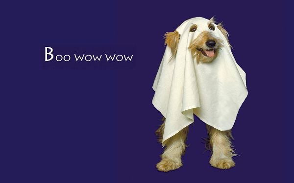 Free Scenery Wallpaper - Includes a Boo Wow Wow Dog, Adds You Fun for Halloween's Day!