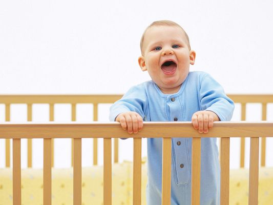 Free Scenery Wallpaper - Includes a Little Baby Boy, Is He Going to Climb over the Fence?