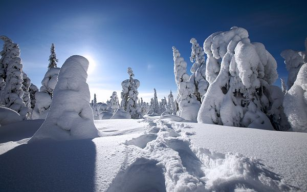 Free Scenery Wallpaper - Shows the Scene of Winter in Finland, What a Pure and Wonderful World!