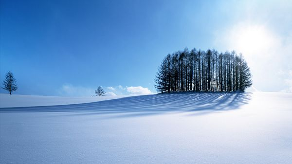 Free Scenery Wallpaper - With a Winter and Snowy Scene, an Amazing One!,click to download