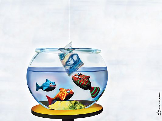 Free Wallpaper - Fish Indifferent to Money