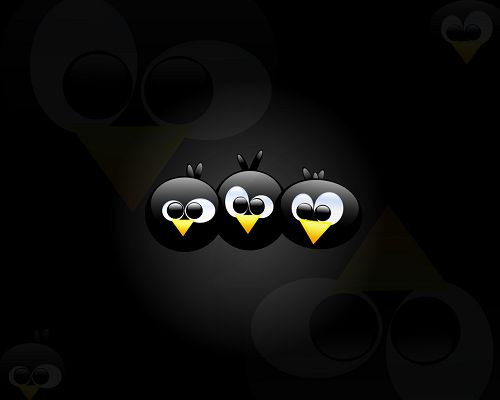 Free Wallpaper - Includes Three Angry Birds, Fun and Decent Enough to Fit All Users!