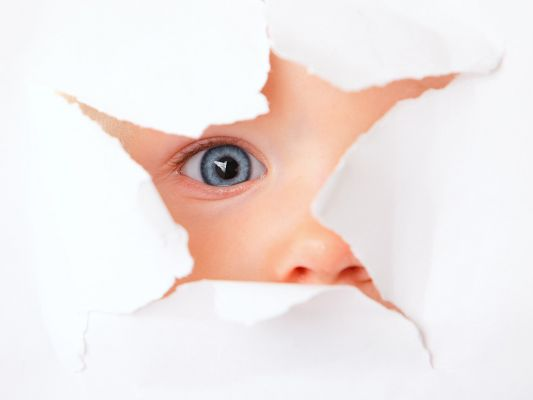 Free Wallpaper - Includes a Cute Baby, Looking At the Outside World Curiously.