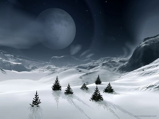 Free Wallpaper - Includes a Snowy World and Pine Trees, All Natural Beauty!