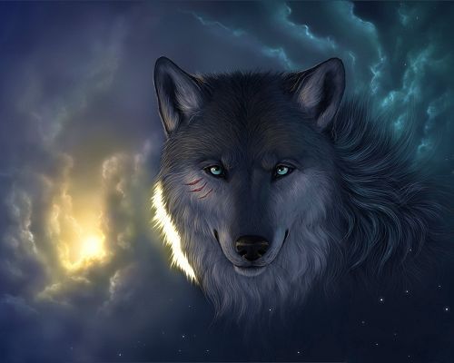 Free Wallpaper - The Most Impressed for the Determination and Power of the Wolf!