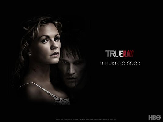 Free Wallpaper of True Blood,click to download